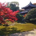 騎機車來欣賞美麗的楓葉! 來看令人感動的景色吧【關西編】